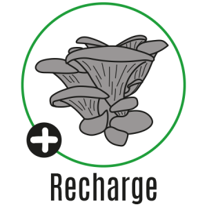 boutique_recharge