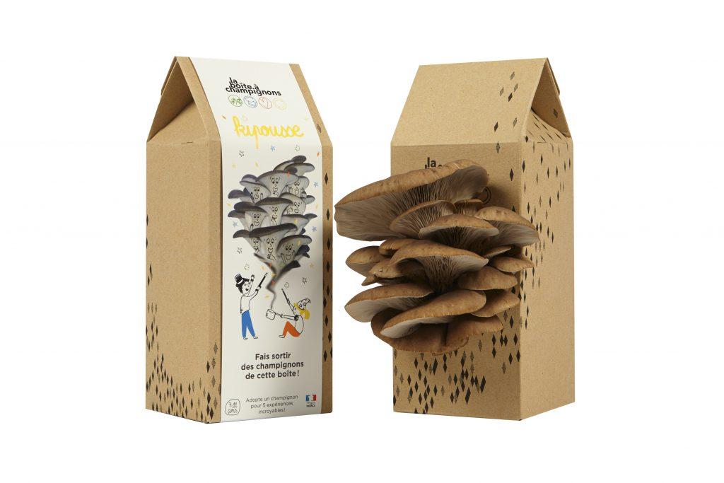 Retrouvez nous au salon saveurs la bo te champignons - Cuisiner les pleurotes ...