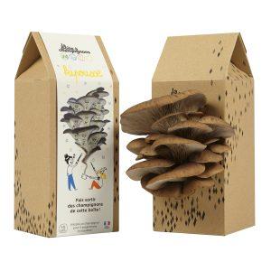 Boîte à Champignons Kipousse pour enfants