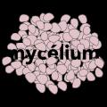 mycelium-rose